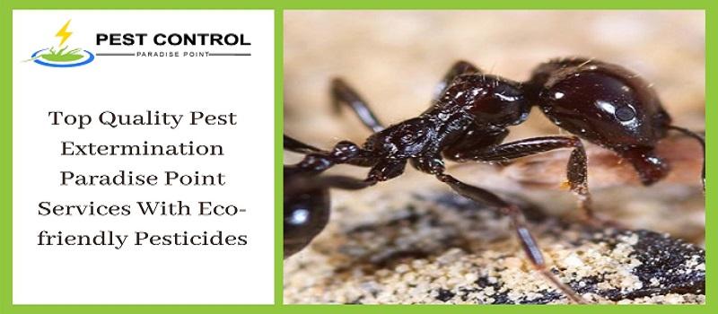 Eco-friendly Pest Control Paradise Point