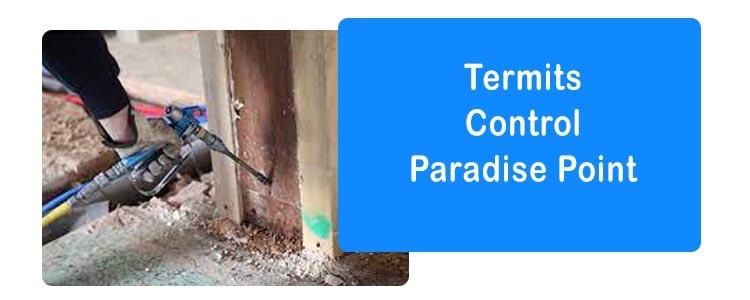 Termite Control Paradise Point